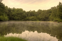 The Farm's pond offers visitors a scenic place to catch fish.