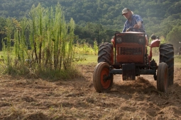 A farmer plows rows for new crops on the Mt Laurel Farm.