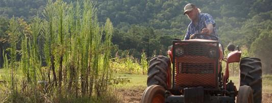 Mt Laurel Farmer CSA