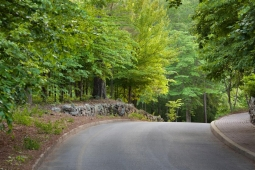 Tree-lined roads welcome residents home to Mt Laurel.